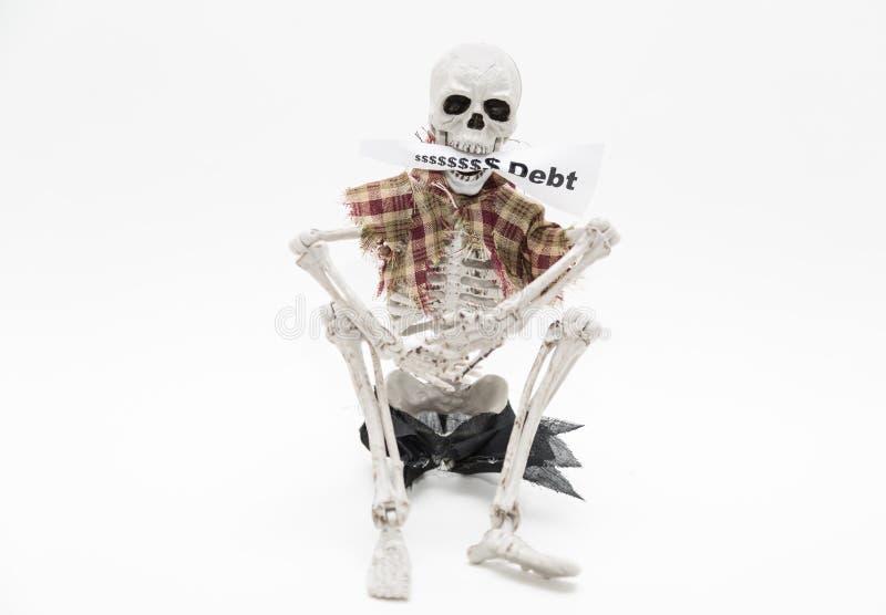 Skelett, das Mitteilungstag in seinen Kiefern auf weißem Hintergrund sitzt und hält stockfotografie