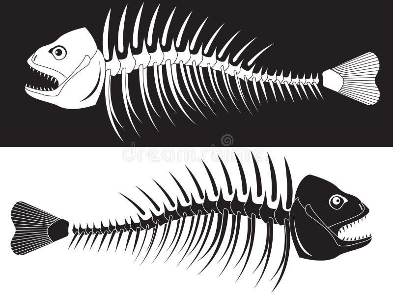 Skelett der Fische lizenzfreie abbildung
