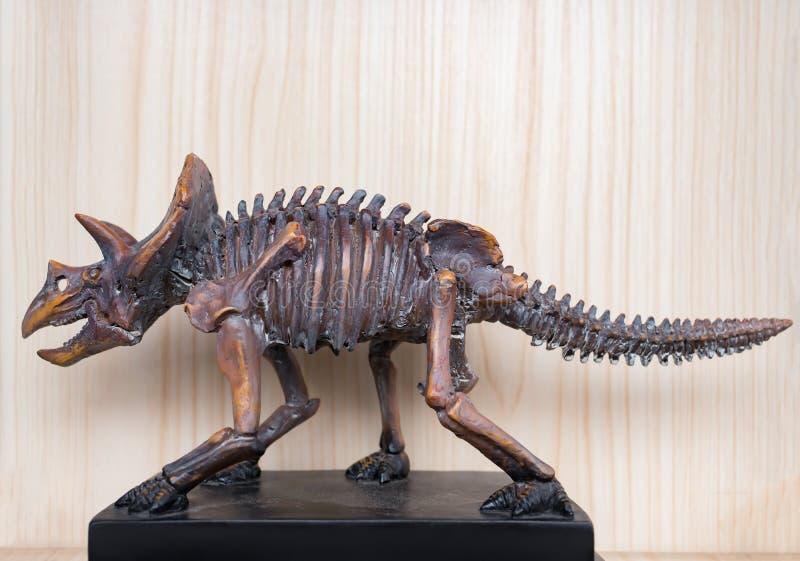 Skelett för Triceratops för sidosikt royaltyfri bild