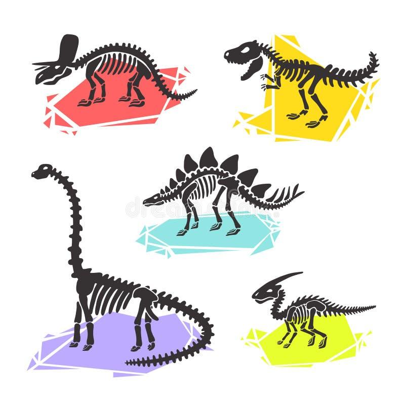 Skelett- fastställd diplodocus för vektordinosaurie, triceratops, t-rex, stegosaurus, parasaurolophus stock illustrationer