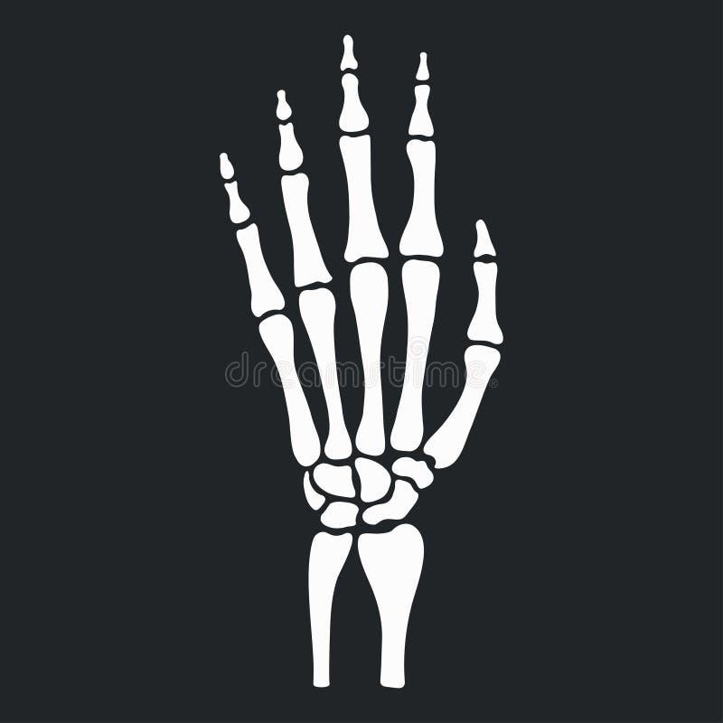 Skelett- hand med bensymbolen vektor royaltyfri illustrationer