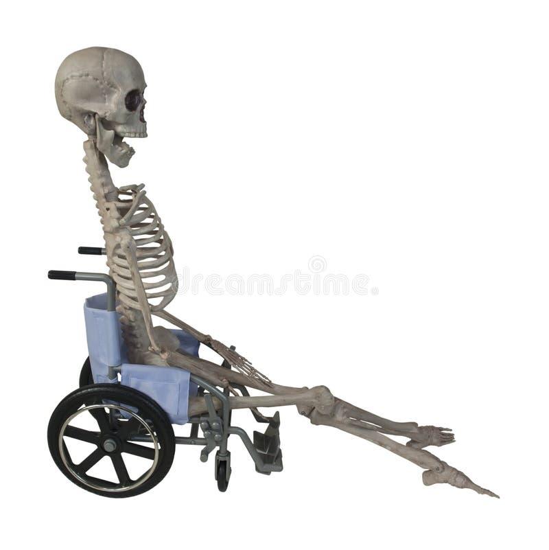 Skelett i en rullstol royaltyfria foton