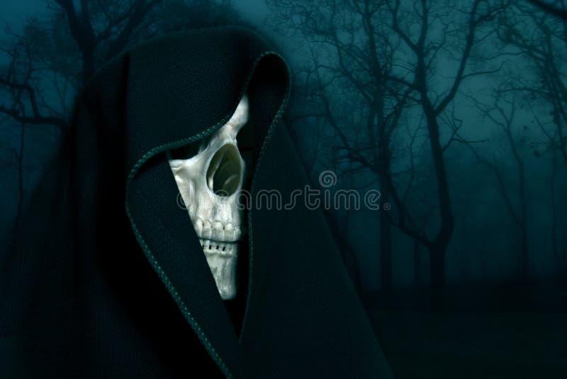 Skelett i en svart huv. royaltyfria bilder