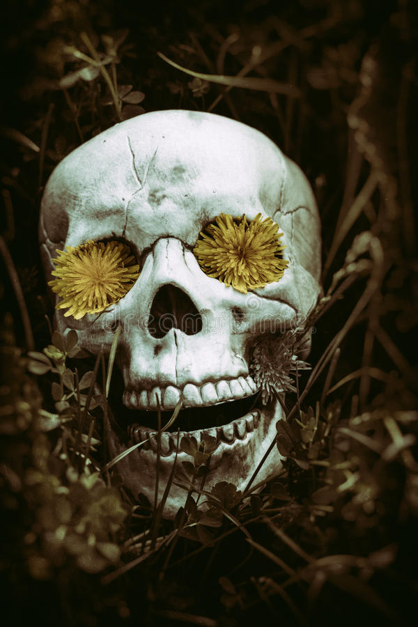 Skelett i gräset 2 arkivfoton