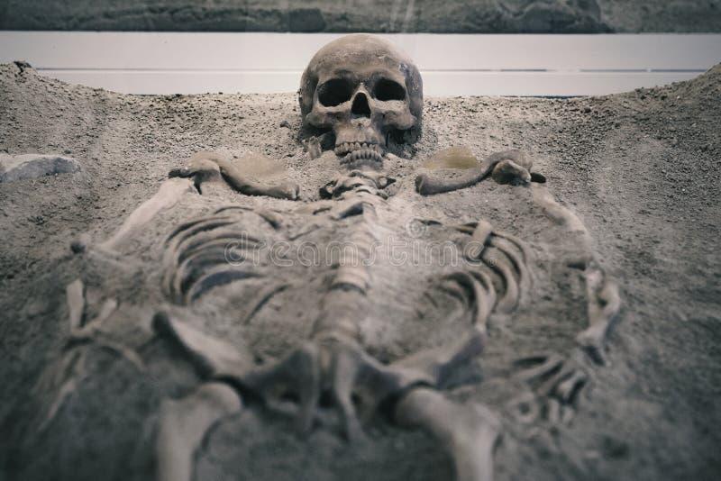 Skelett im Sand lizenzfreie stockfotografie