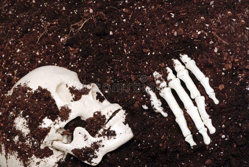 Skelett im Schmutz lizenzfreie stockbilder