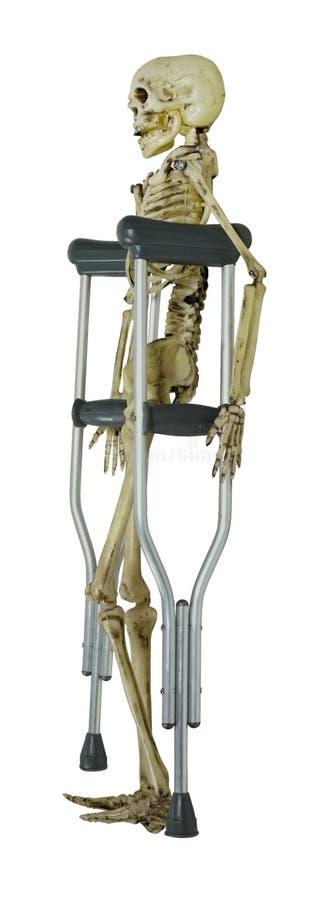 skelett- kryckor royaltyfria foton