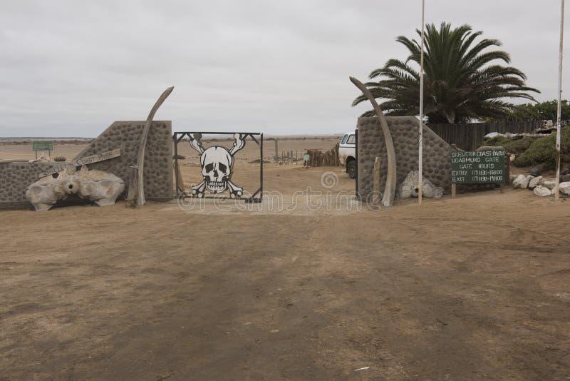 Skelett- kust royaltyfri foto