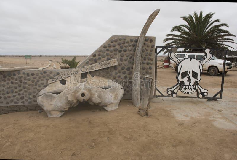Skelett- kust arkivfoto
