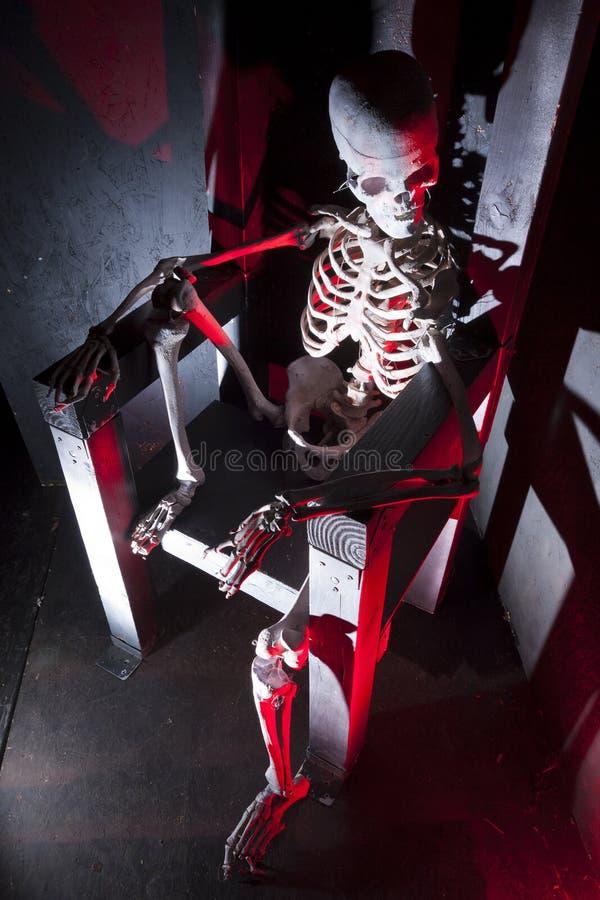 Skelett på biskopsstolen royaltyfri fotografi