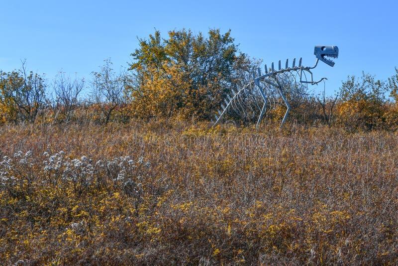 Skelett- skulptur för dinosaurie i fält arkivbilder