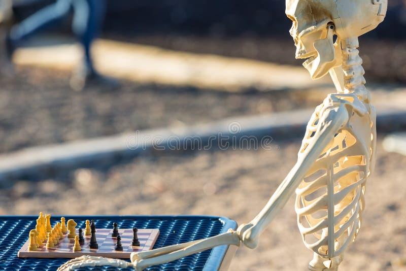 Skelett som spelar schack på en picknickbänk arkivfoton