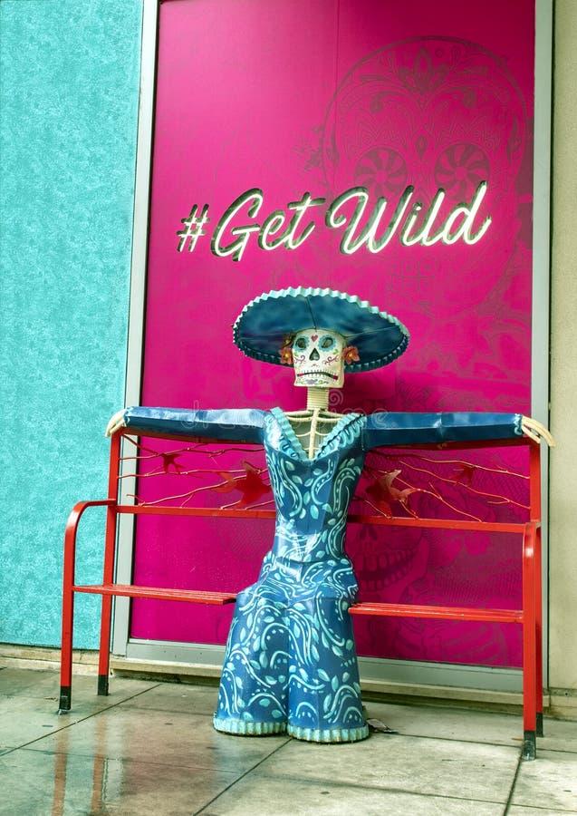 Skelett und angekleidet in der fantastischen mexikanischen Kleidung, in einem Symbol des Feiertags Dia de Los Muertos oder im Tag stockfotografie