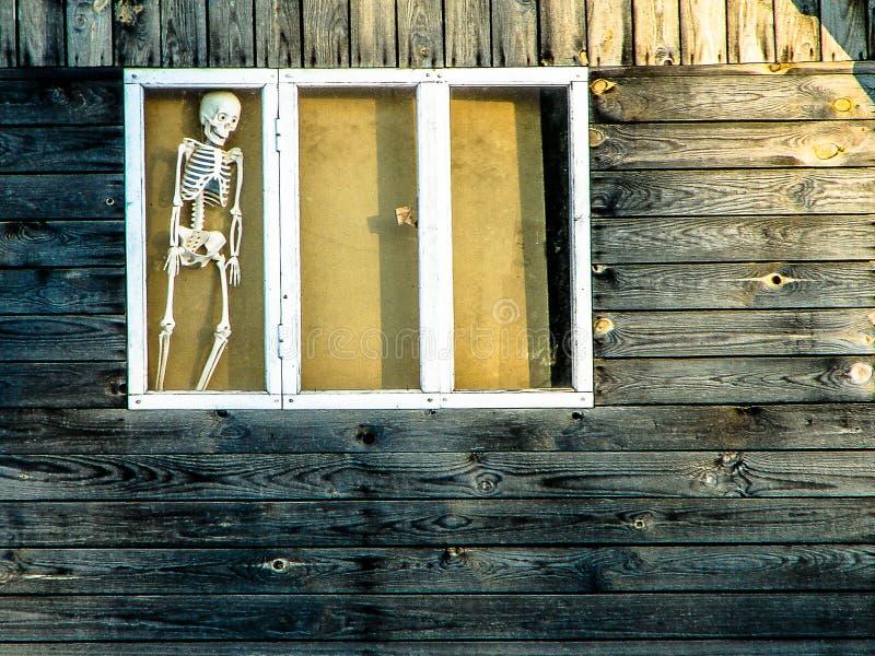 Skelettet i fönstret av ett ryskt landshem royaltyfri bild
