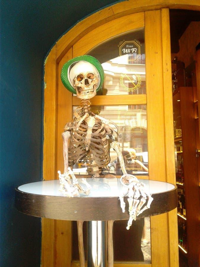 Skelettgast stockfotos