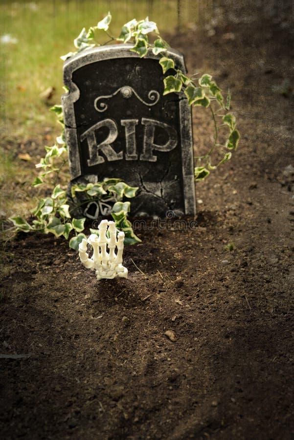 Skeletthand, die aus Grab herauskommt stockbilder