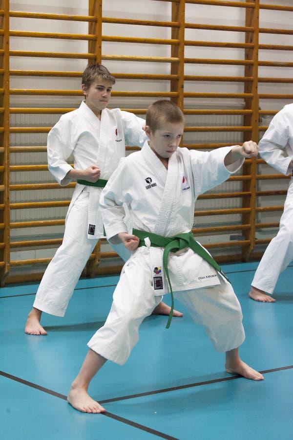 Skelleftea, Σουηδία - 7 Φεβρουαρίου 2011 Karate Shotokan πρακτική με Sensei, τη Robin Nyholm και Tero Nyholm Μόνος - αμυντικές τε στοκ εικόνες