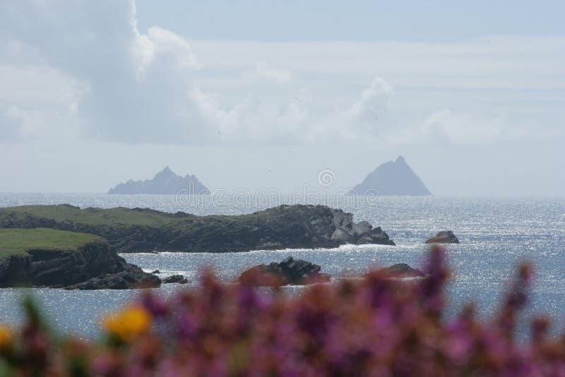 Download Skellig Islands stock image. Image of distant, beach, ocean - 5936891