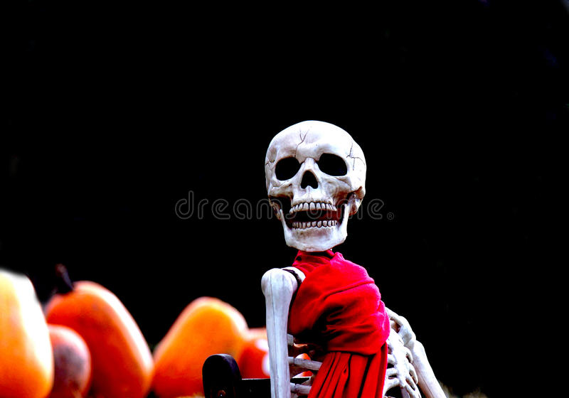 Download The Skellington Of Featherstone Stock Photo - Image: 39753010
