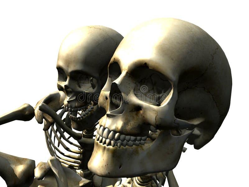 Skelton 15 vektor illustrationer