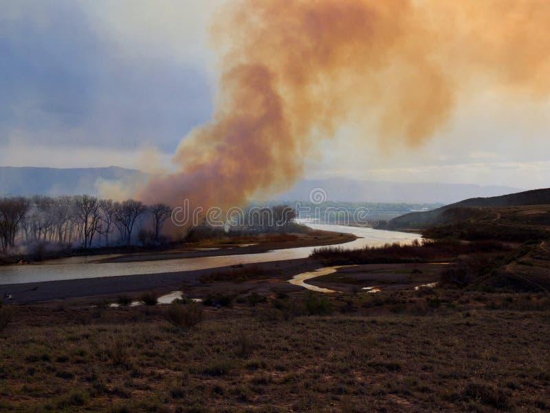 Skeppareöbrand i västra Colorado arkivbilder