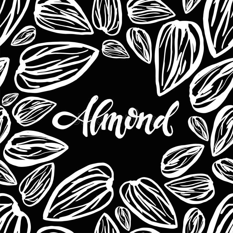 Sketch almonds pattern on black background. Seamless pattern with dried almonds on black background. Cute doodle illustration vector illustration