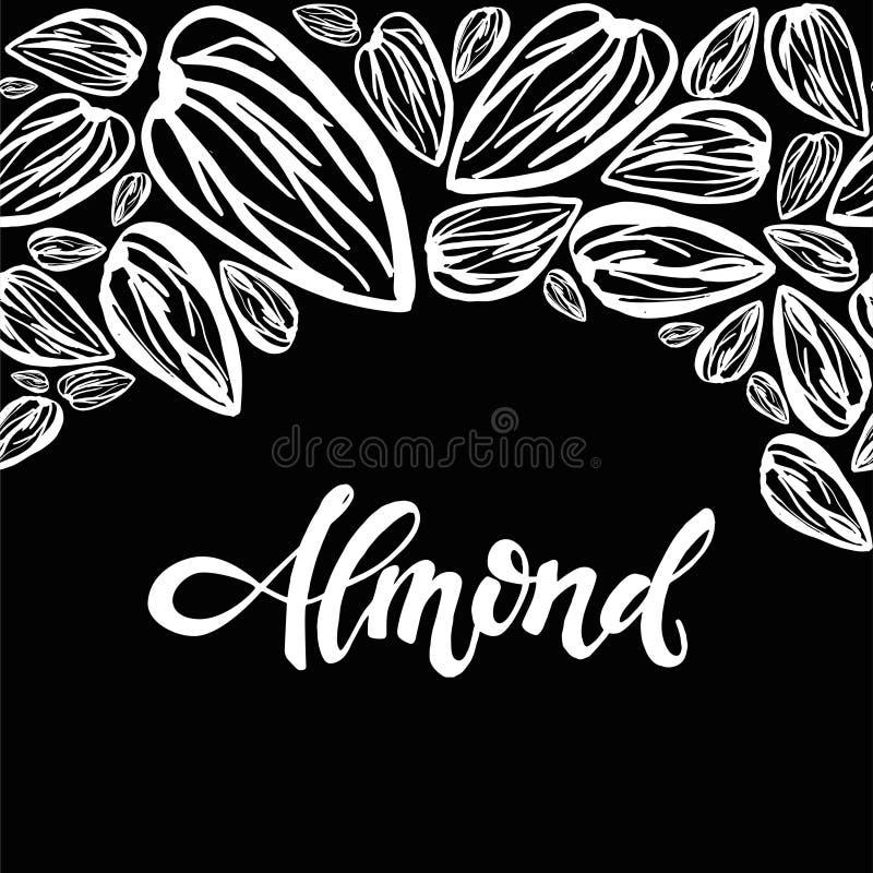 Sketch almonds pattern on black background. Seamless pattern with dried almonds on black background. Cute doodle illustration stock illustration