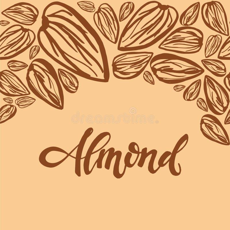 Sketch almonds pattern on light background. Seamless pattern with dried almonds on light background. Cute doodle illustration vector illustration
