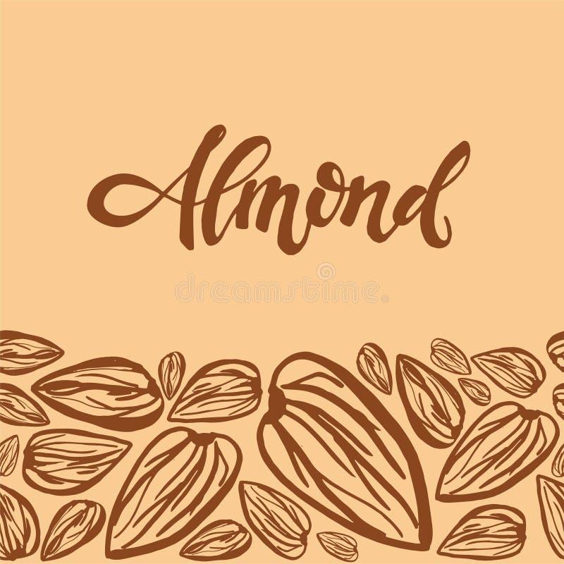 Sketch almonds pattern on light background. Seamless pattern with dried almonds on light background. Cute doodle illustration stock illustration