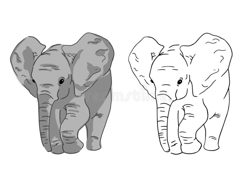 Baby elephant sketches on white background. Set of simple drawing of elephant. stock illustration