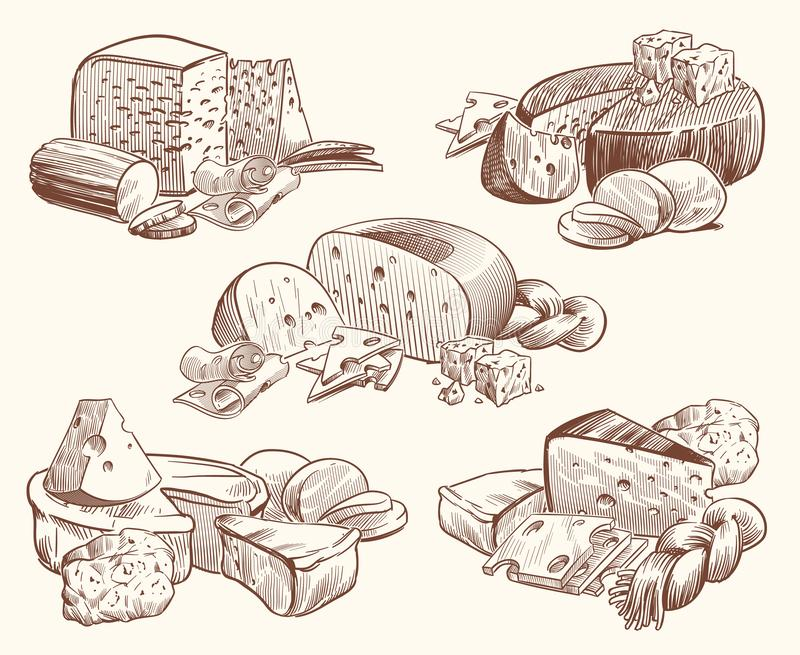 Sketch cheese. Art compositions with cheeses. Tasty brie, feta and parmesan slices gourmet appetizer. Doodle sketch. Vintage isolated vector mozzarella vector illustration