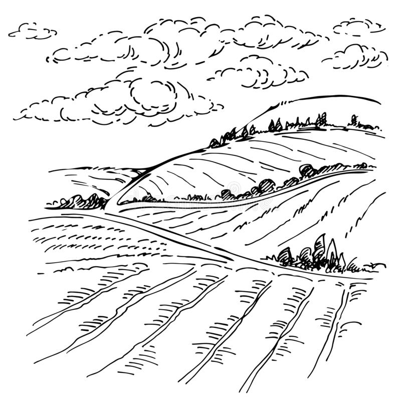 Landscape ink sketch drawing. Rural mediterranean engraved landscape with plowed fields, cypresses and pine tree. vector illustration