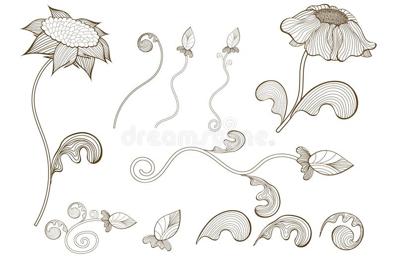 Sketch decorative plants and flowers collection. Hand drawn vintage vector design elements. royalty free illustration