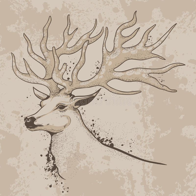 Sketch of a deer head with antlers. Vector illustration, drawing, sketch ink deer head with antlers in vintage style background texture royalty free illustration
