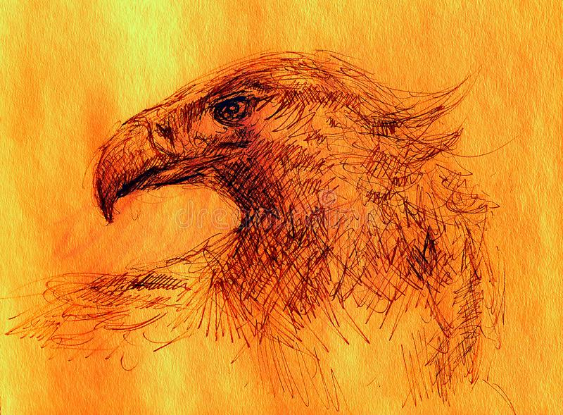 Sketch of an eagle head on a paper. Color effect. Sketch of an eagle head on a paper. Color effect royalty free illustration