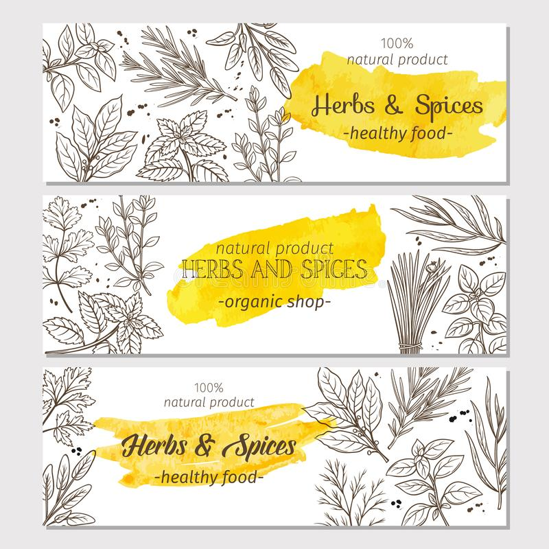 Free Sketch Herbs And Spices Royalty Free Stock Photos - 103741938