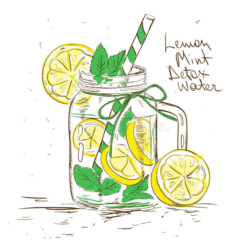 Sketch illustration of Lemon Mint Detox water. Hand drawn sketch illustration with Lemon Mint Detox water. Healthy lifestyle concept stock illustration
