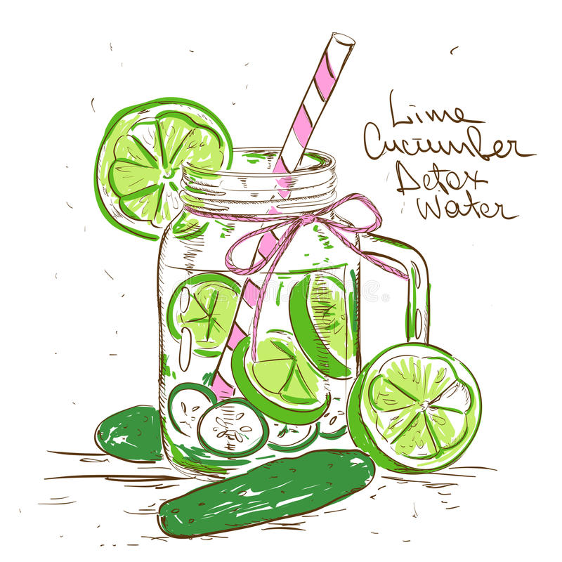 Sketch illustration of Lime Cucumber Detox water. Hand drawn sketch illustration with Lime Cucumber Detox water. Healthy lifestyle concept royalty free illustration