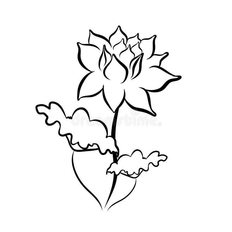 Sketch line drawing of lotus flower stock vector illustration of download sketch line drawing of lotus flower stock vector illustration of growth object mightylinksfo