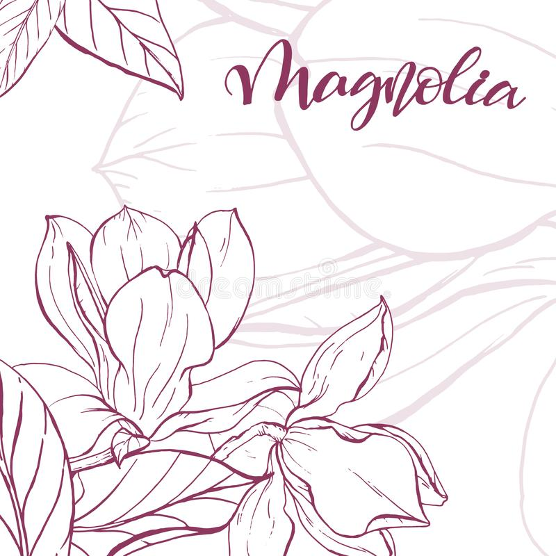 Sketch linear magnolia blossom stock vector illustration of download sketch linear magnolia blossom stock vector illustration of blossom engraving 108700936 maxwellsz
