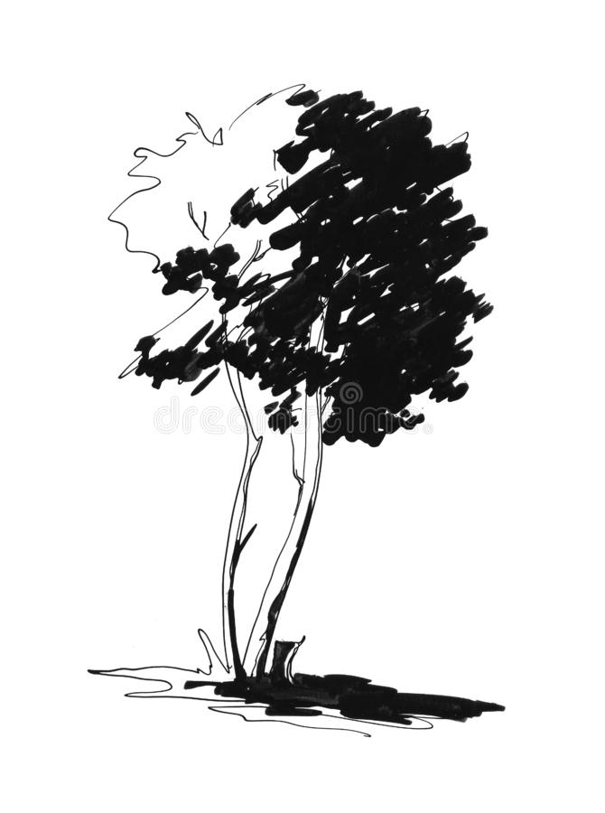 Sketch of lonely tree royalty free stock photography