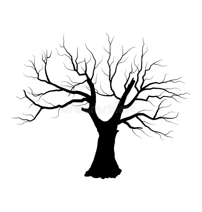 Free Sketch Of Dead Tree Without Leaves , Isolated On W Royalty Free Stock Photography - 42271817
