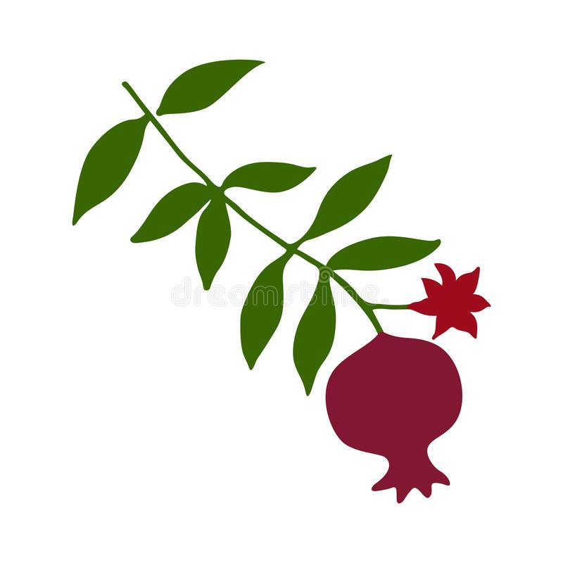 Sketch with pomegranate on branch with green leaves and flower silhouette. royalty free illustration