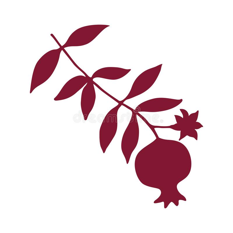 Sketch with pomegranate on branch with leaves and flower silhouette. royalty free illustration
