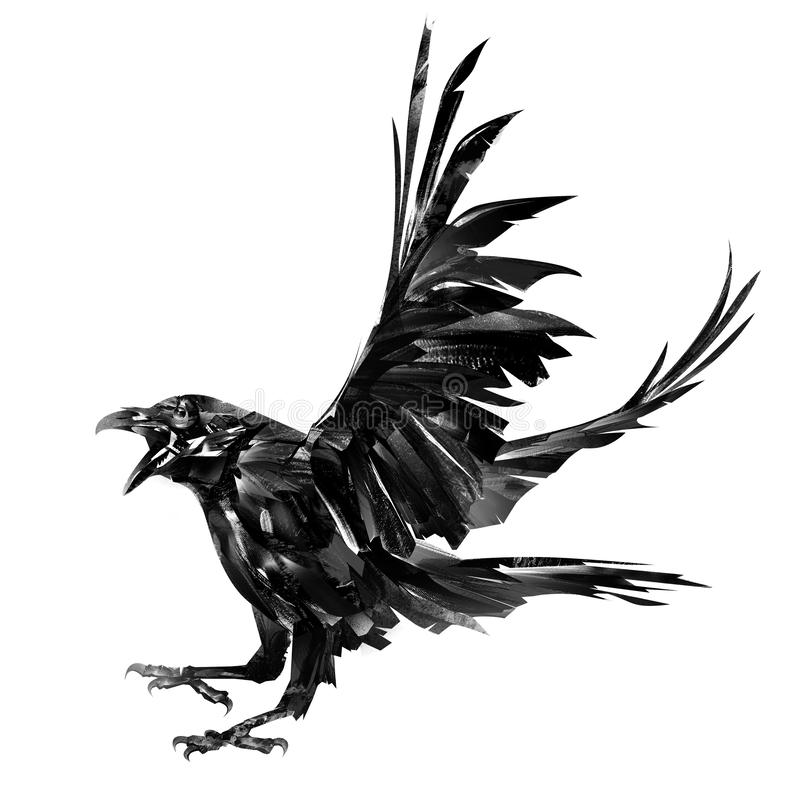 Painted raven bird in monochrom on a white background stock images