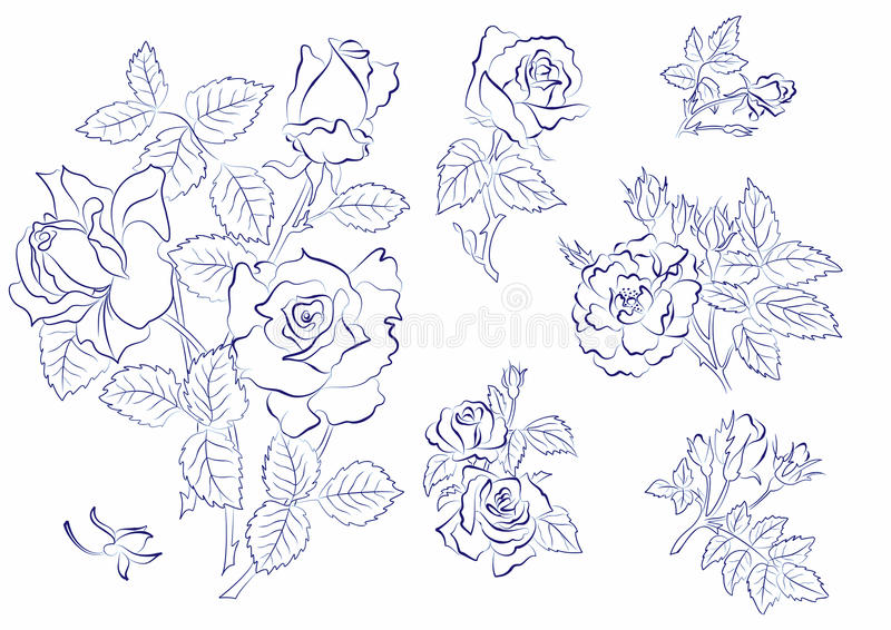 Download Sketch Of Roses Stock Images - Image: 12961084