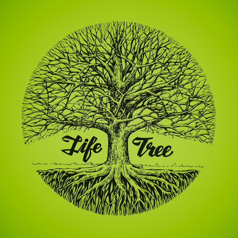 Sketch tree with roots. Ecology, environment. Nature. Hand drawn vector sketch tree with roots. Ecology, environment. Nature royalty free illustration