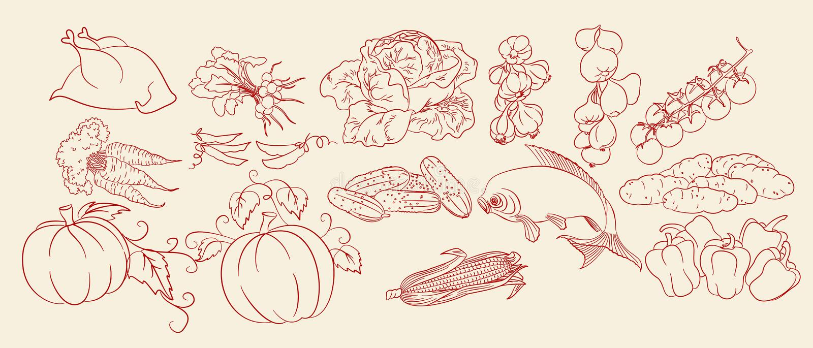 Sketch Of Vegetables, Chicken & Fish Stock Image
