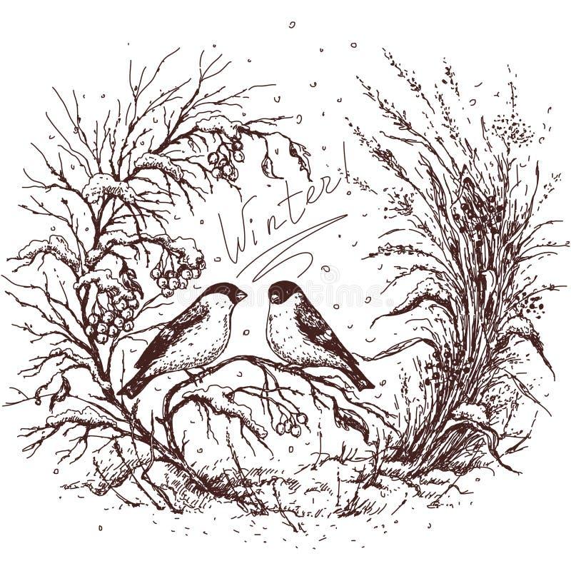 Sketch of winter frame vector illustration