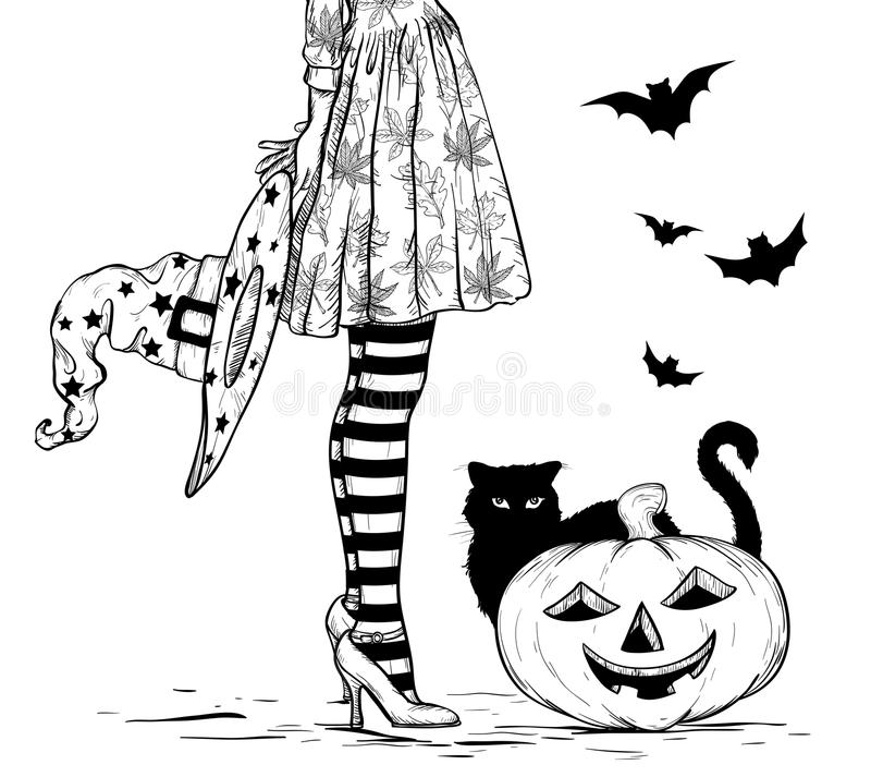 Sketch of Witch with wizard hat in hand in halloween costume, black cat and pumpkin. Black and white royalty free illustration